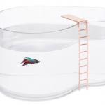 ベタ用のプール型水槽Fishpool!飛び込み台付きwww