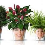 植物がお洒落なヘアスタイルに。面白アイデアプランター