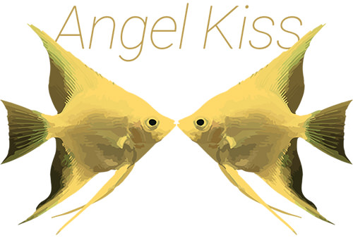 Angel Kiss