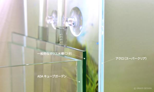 キューブガーデンとアクロ水槽を比較