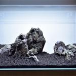 水槽写真の傾きや歪みをキレイに補正する方法