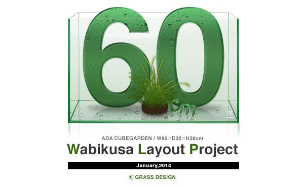 60cm水槽でレイアウト!佗び草(侘び草)レイアウト企画を始動します!