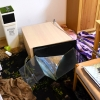 平成28年熊本地震で60cm水草水槽が倒壊!