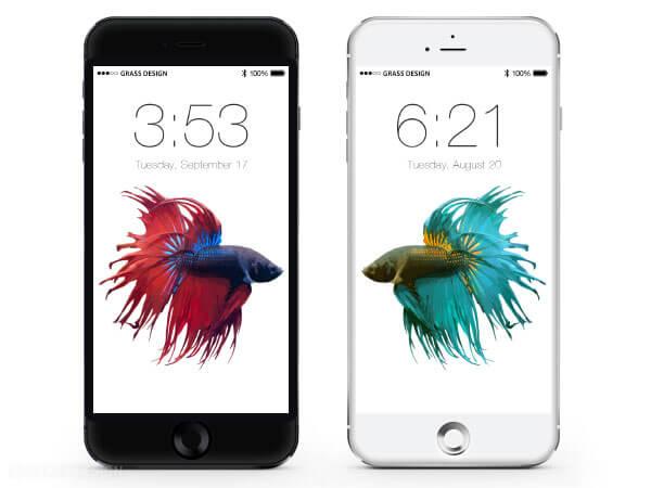 iPhone6sの壁紙は金魚が泳ぎまわる?画像がリーク。